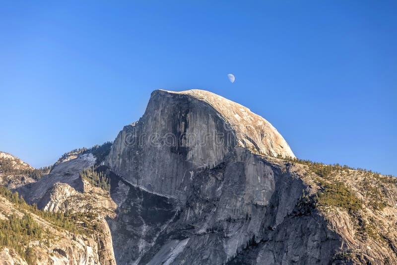 Halber Hauben-Mond stockfotografie