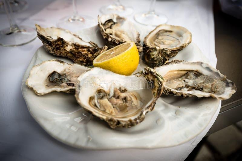 Hald dozen oysters. Hald dozen fresh oysters on a white plate with a lemon stock photo