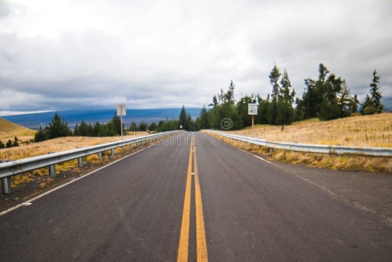 HaleakalÄ  park narodowy - piękny i różnorodny ekosystem obrazy royalty free