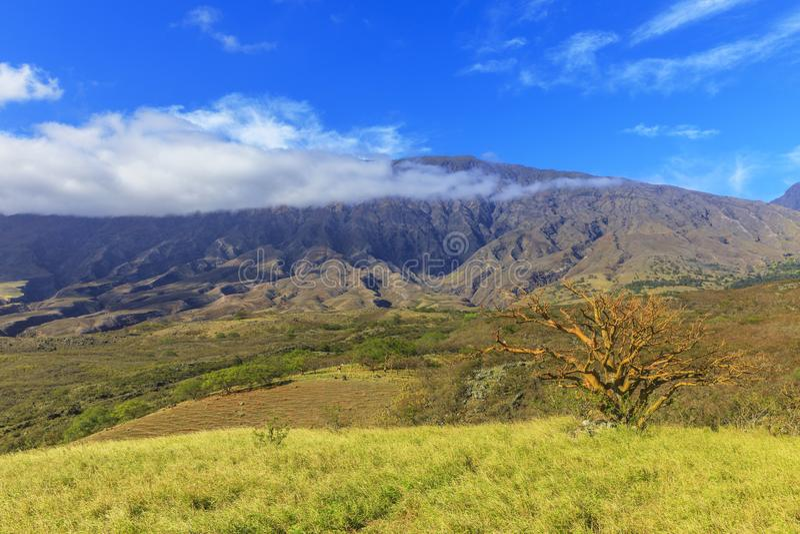 Haleakala wulkanu plecy droga, Maui, Hawaje, usa zdjęcia royalty free