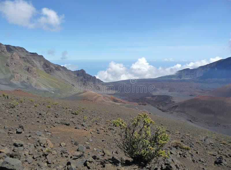 Haleakalakrater op Maui stock foto