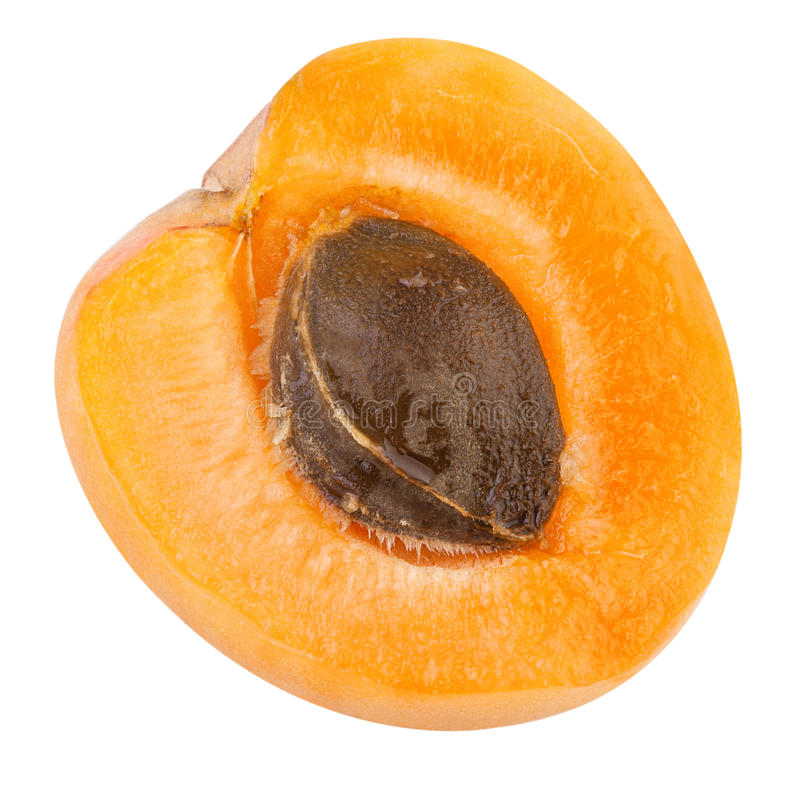 Half of a Apricot with fruit core stock images