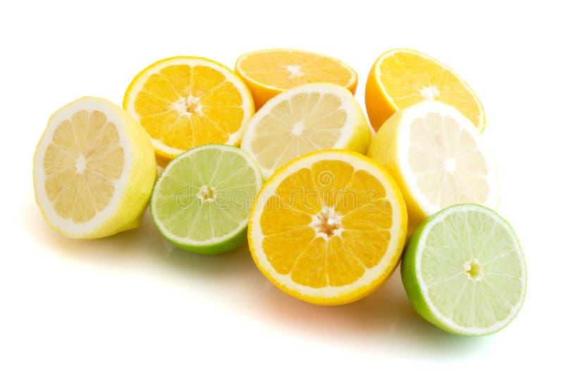 Half citrus stock photo