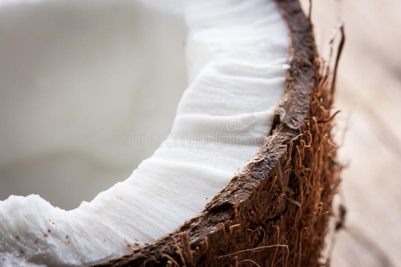 Half a coconut detail. Detail of half a coconut texture royalty free stock photo