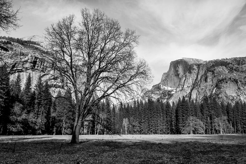 Half Dome over Cooks Meadow royalty free stock photos
