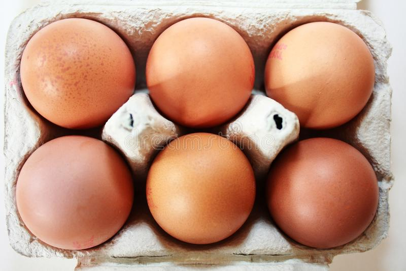 Half dozen eggs in box stock photo