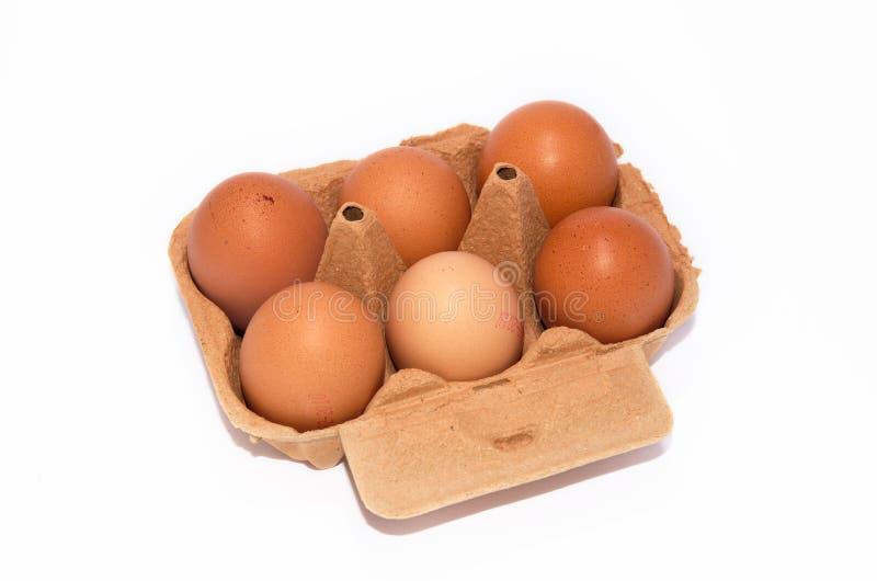 Half a dozen organic eggs in cardboard box stock photography