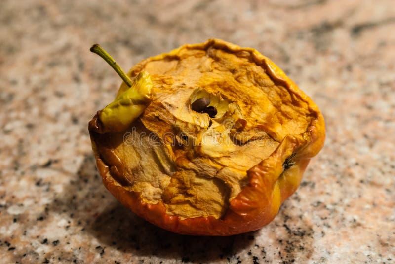 Half-eaten dried apple. royalty free stock photos