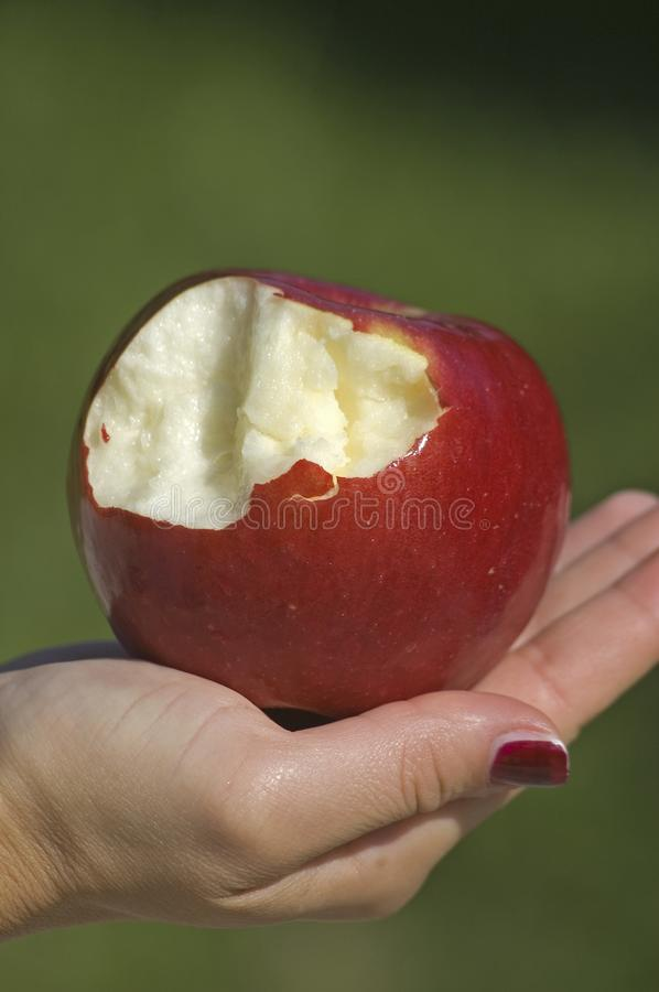 Half eaten red apple. Apple in hand, red apple with byte stock images