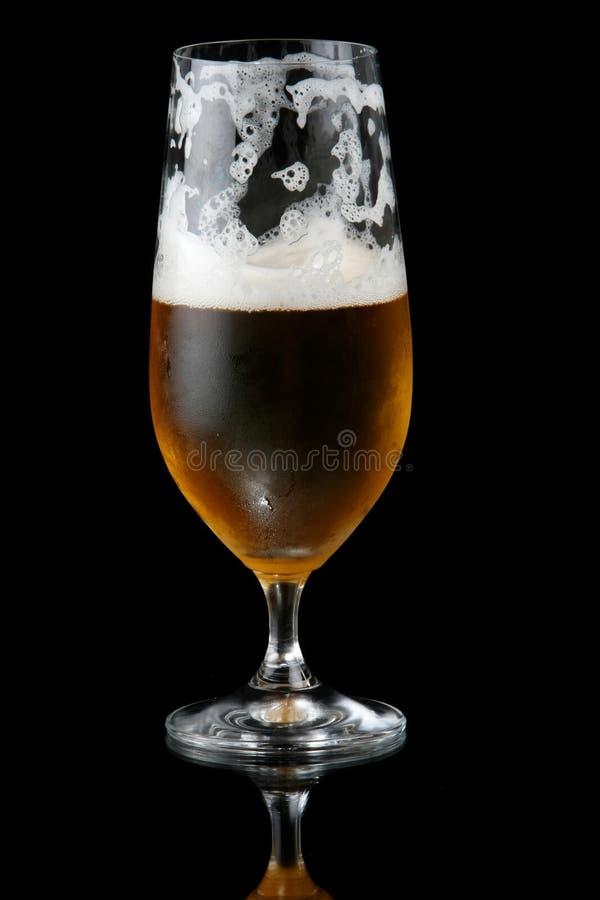 Half Empty Beer royalty free stock photos