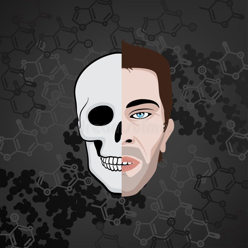 Half face skull royalty free illustration
