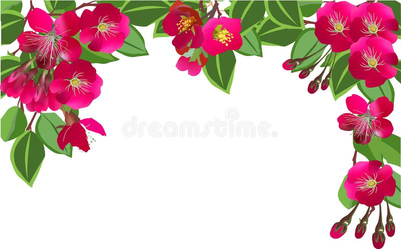 Half frame from dark pink flowers and green leaves on white stock illustration