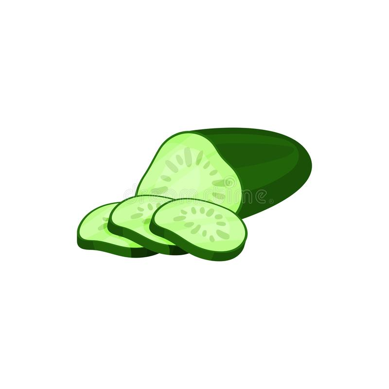Half of fresh green cucumber and three round slices. Organic vegetable. Fresh farm food. Natural and healthy ingredient. Half of fresh green cucumber and three vector illustration