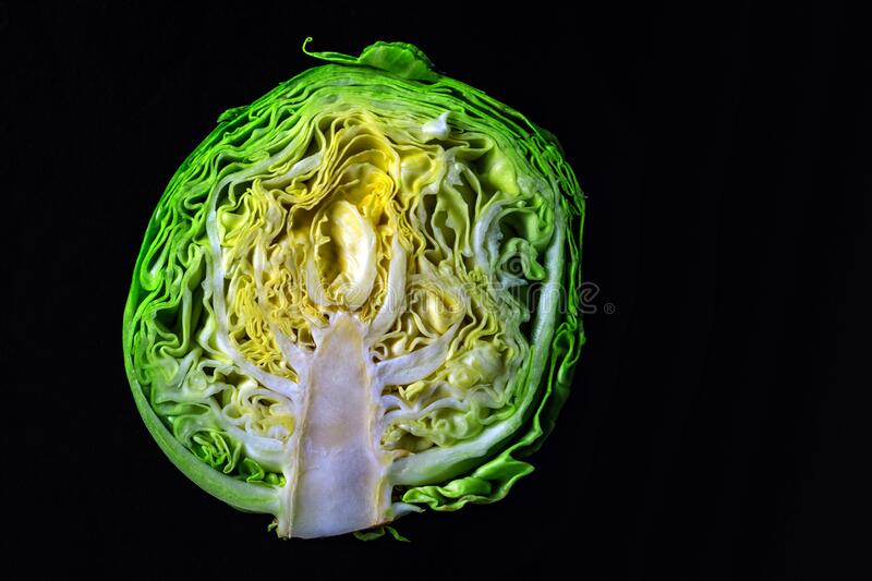 Half fresh young cabbage on a dark background royalty free stock photo