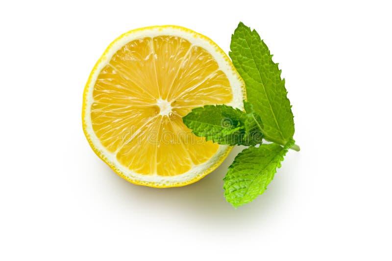 Half lemon and fresh mint. The half lemon and fresh mint on white background stock photos