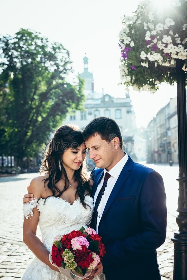 Half-length outdoor portrait of the adorable stylish wedding couple softly hugging, standing head-to-head and holding royalty free stock images