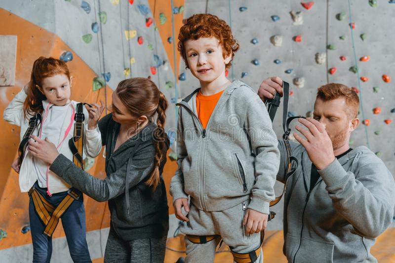 Half-length shot of parents securing their children. In harnesses for climbing a wall with grips at gym stock photography
