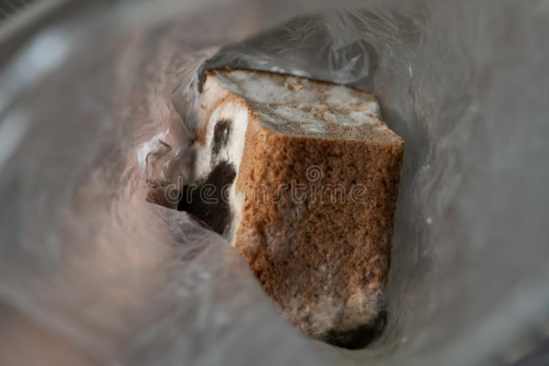 half a loaf of moldy rye bread in a transparent cellophane bag royalty free stock images