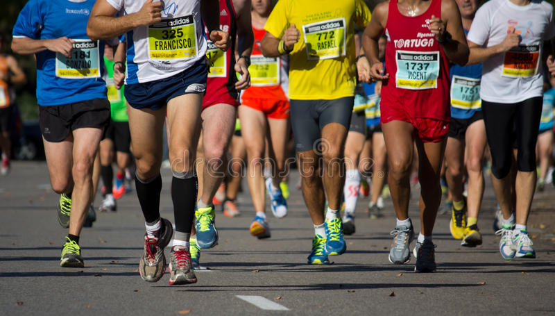 Half maraton royaltyfri bild