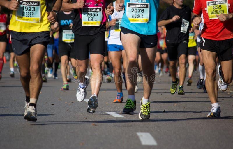 Half maraton fotografering för bildbyråer