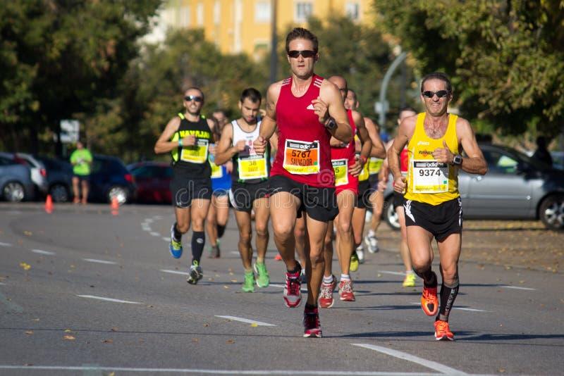 Half maraton arkivfoton