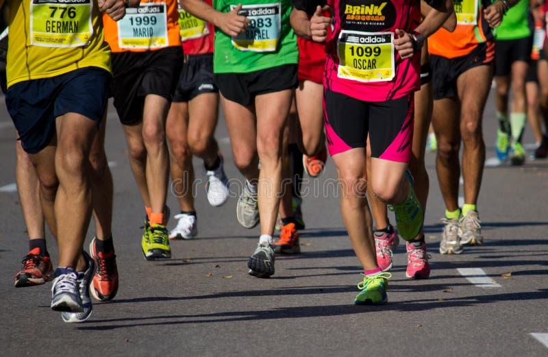 Half maraton royaltyfria bilder