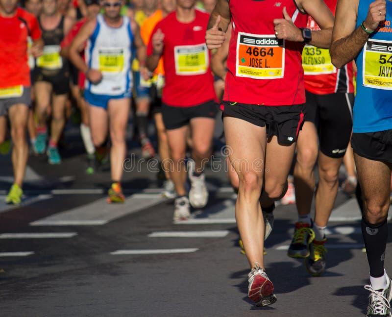Half maraton arkivbild