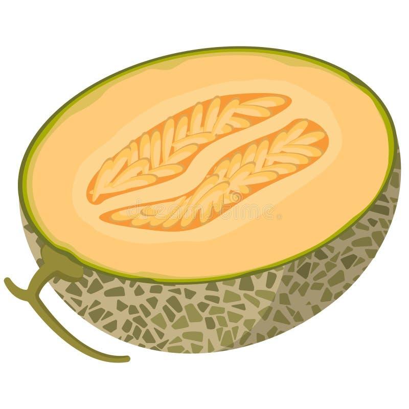 Free Half Melon In Cartoon Style. Stock Photos - 179979493