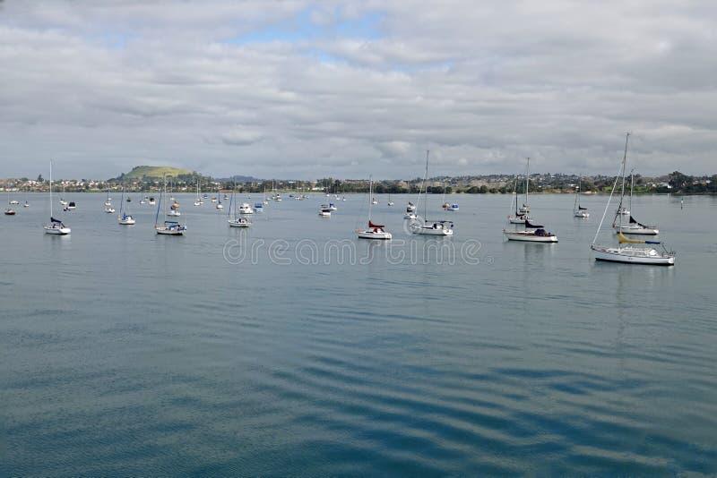 Half Moon Bay à Auckland, Nouvelle-Zélande images libres de droits