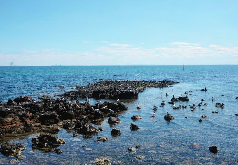Half Moon Bay sikt arkivfoton