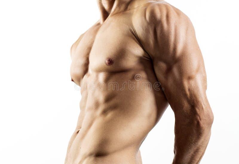 Half naakt sexy lichaam van spier atletische sportman royalty-vrije stock afbeeldingen