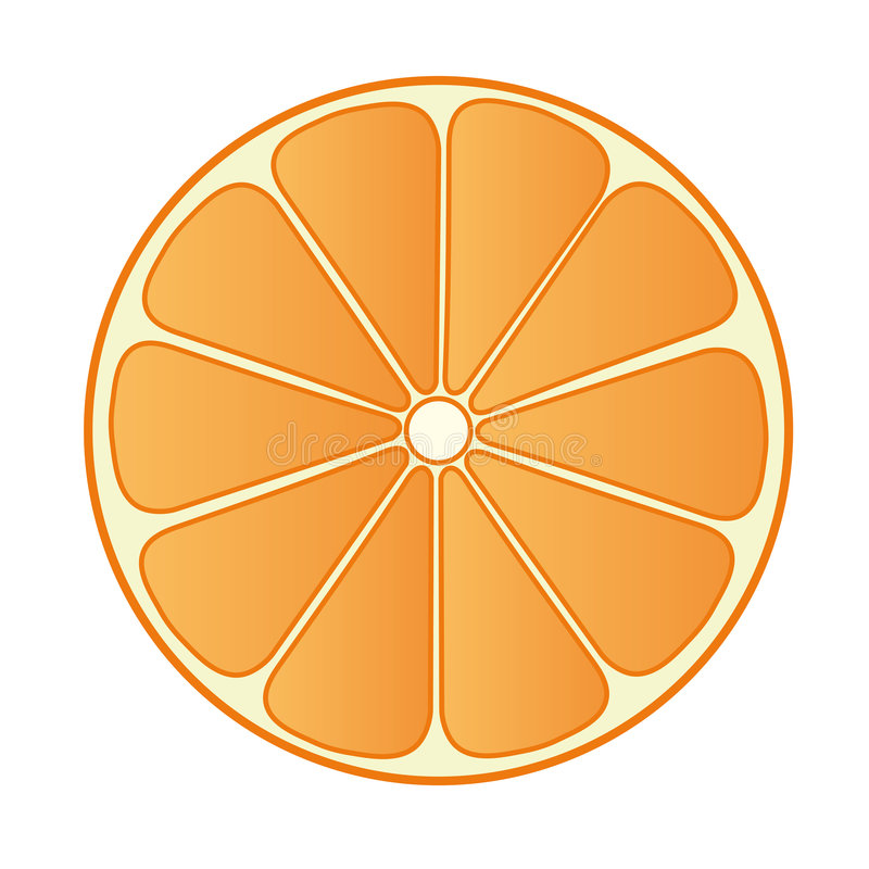 Half Orange 02 stock illustration