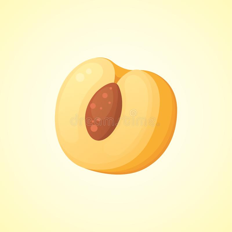 Half of Peach isolated vector illustration. Fresh fruit for your design. royalty free illustration
