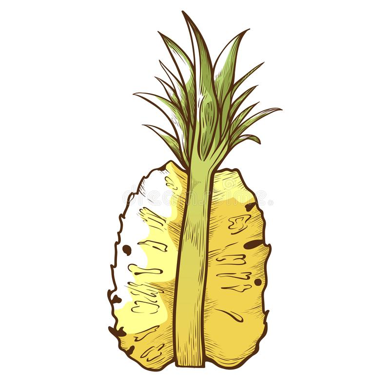 Half pineapple icon, tasty ananas dessert piece vector illustration