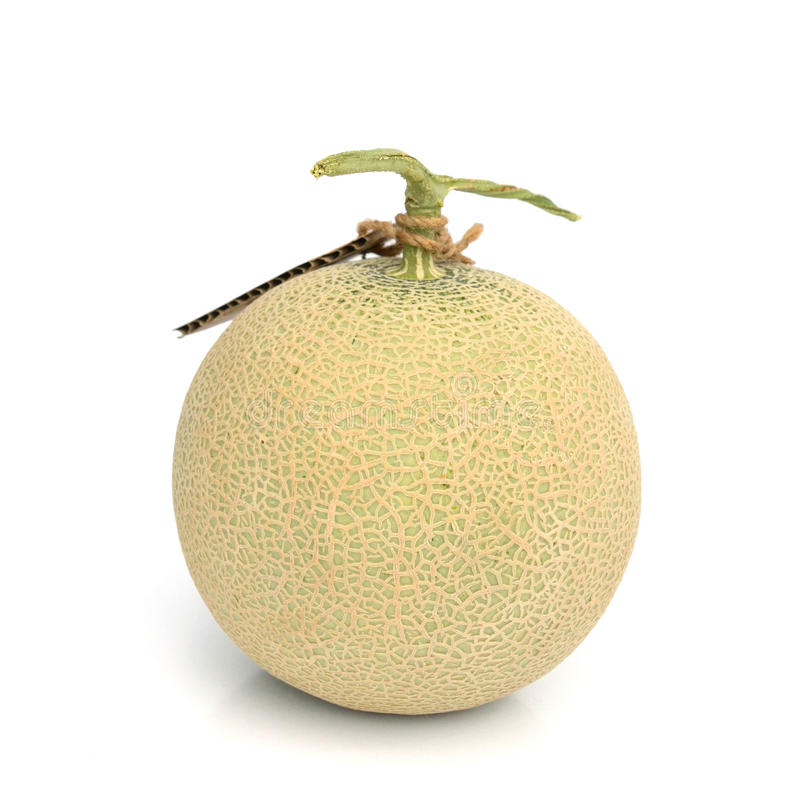 Half and portion cut ripe cantaloupe on white backg. Ripe cantaloupe with stem on a stock images