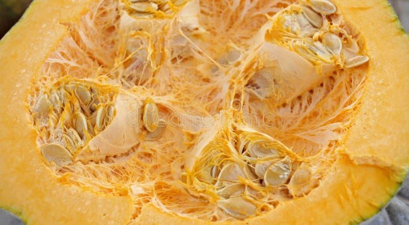 Half pumpkin with seeds. Pumpkin background texture . Squash pattern. Half pumpkin with seeds. Pumpkin background texture . Squash pattern stock image