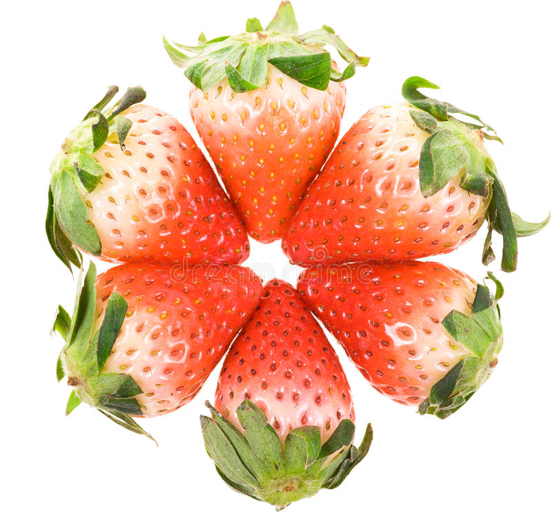 Half-ripe Strawberries with leaves. In a circle. Isolated on a white background stock photos