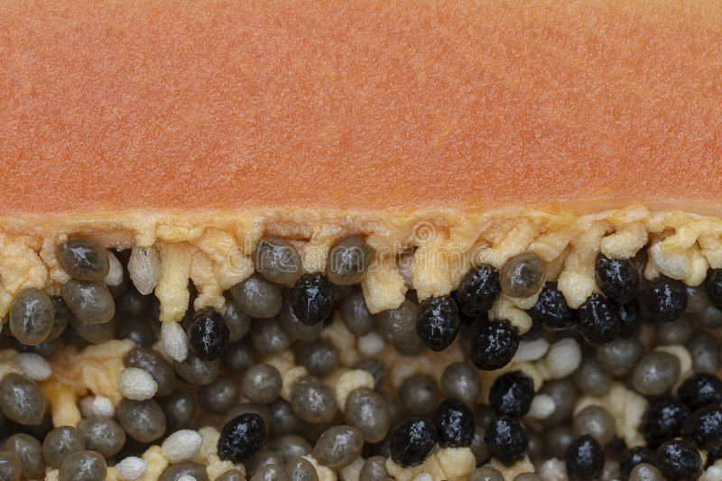 Slices of sweet papaya background, close up. Half of ripe sweet papaya fruit with seeds background, close up stock image