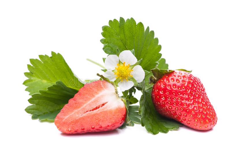 A half and a whole strawberry with flower and leaves stock image