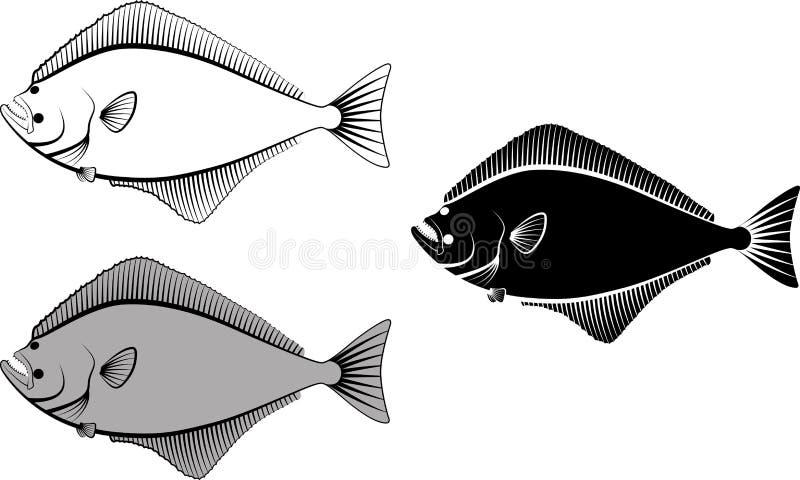 halibut ilustracja wektor