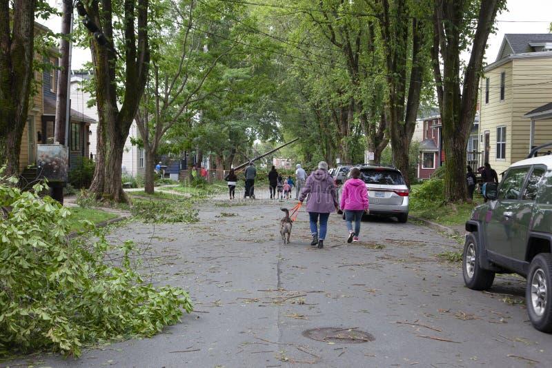 Neighborhood after Hurricane Dorian royalty free stock image
