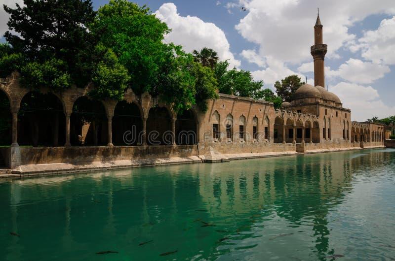 Halil-ur Rahman Mosque, heiliger See (Fish See), Urfa stockbild