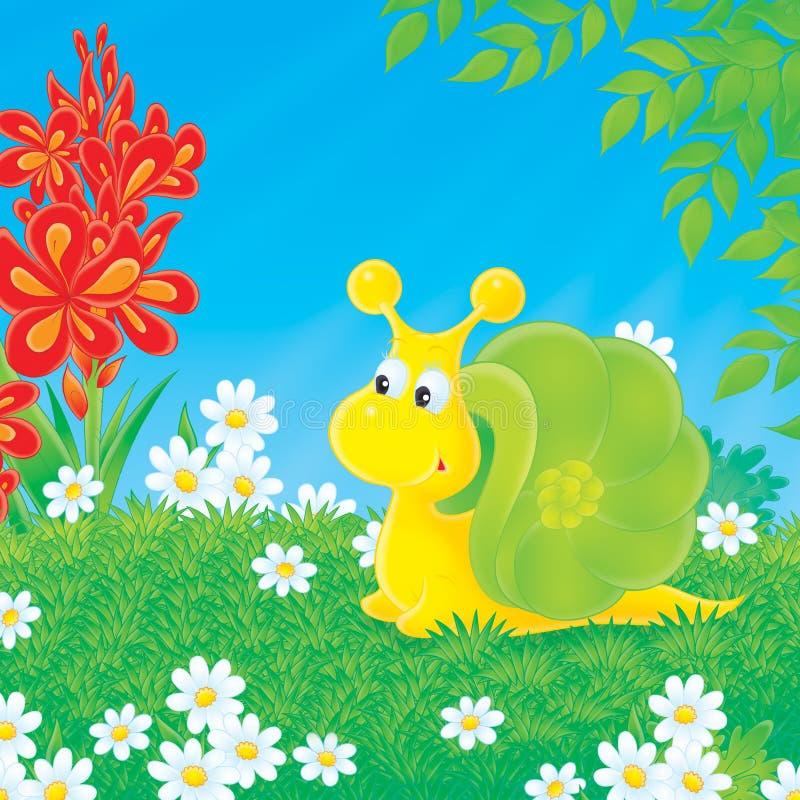 halizny zielony ślimaczka odprowadzenie ilustracji