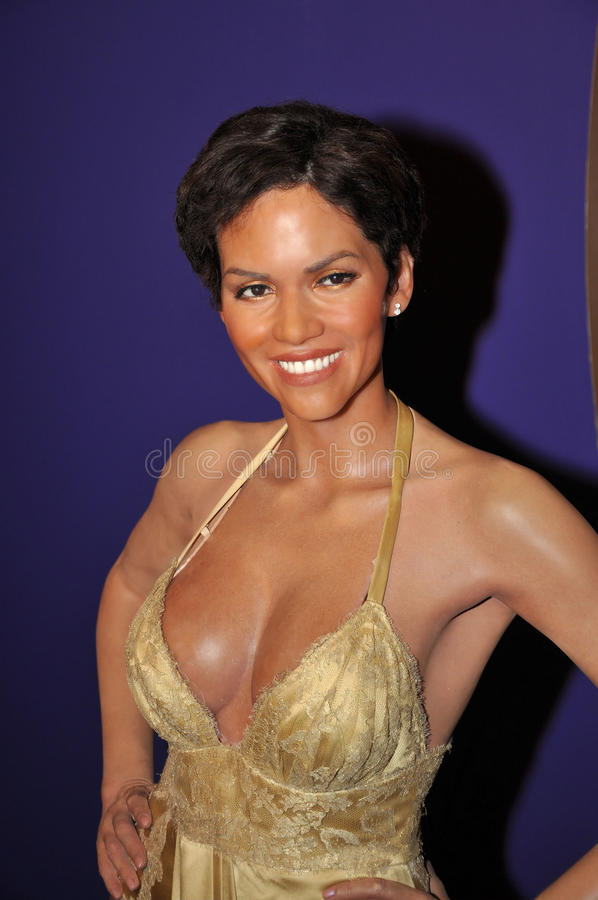 Halle Berry royalty-vrije stock foto