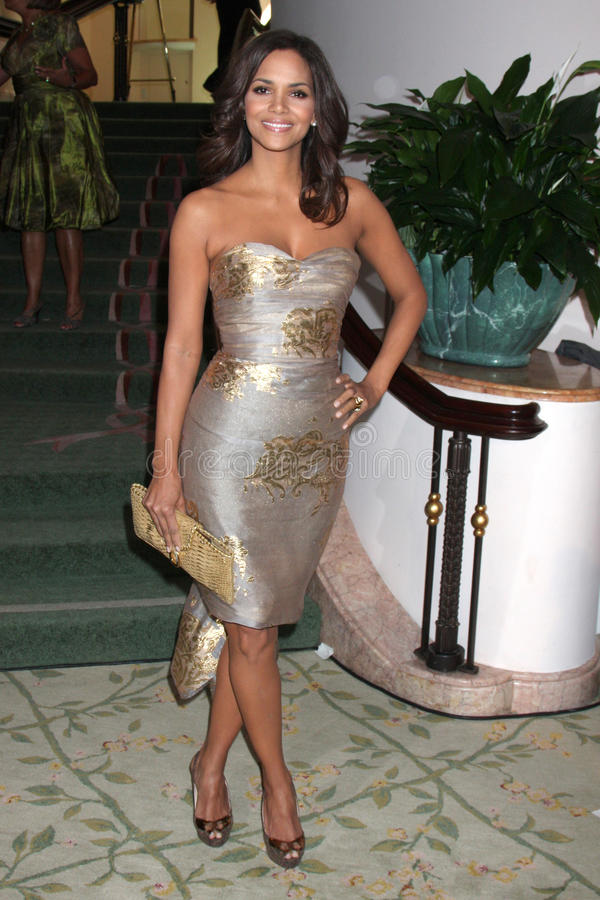 Halle Berry imagem de stock royalty free