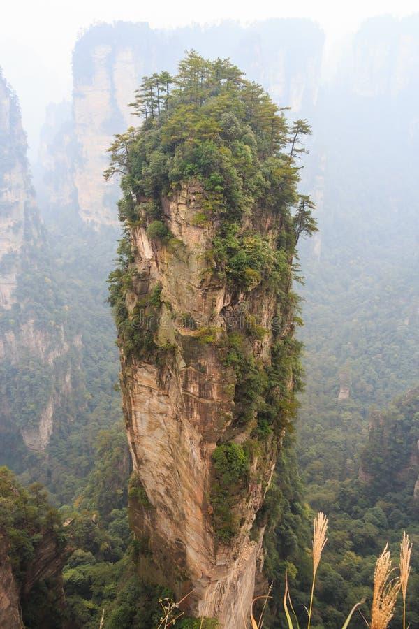 Hallelujaberg i den Zhangjiajie nationalparken (tian zhishan) (reserv för Tianzi bergnatur) och dimma, Kina arkivfoton
