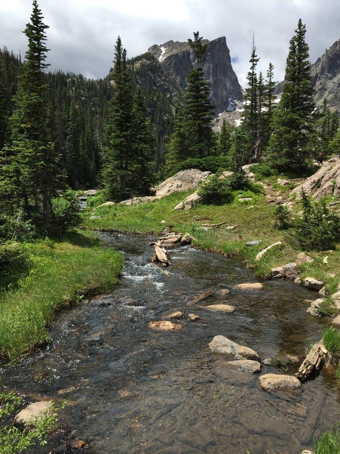 Hallet ragen das Steigen über kleinen Strom in Rocky Mountain National Park empor stockfotografie