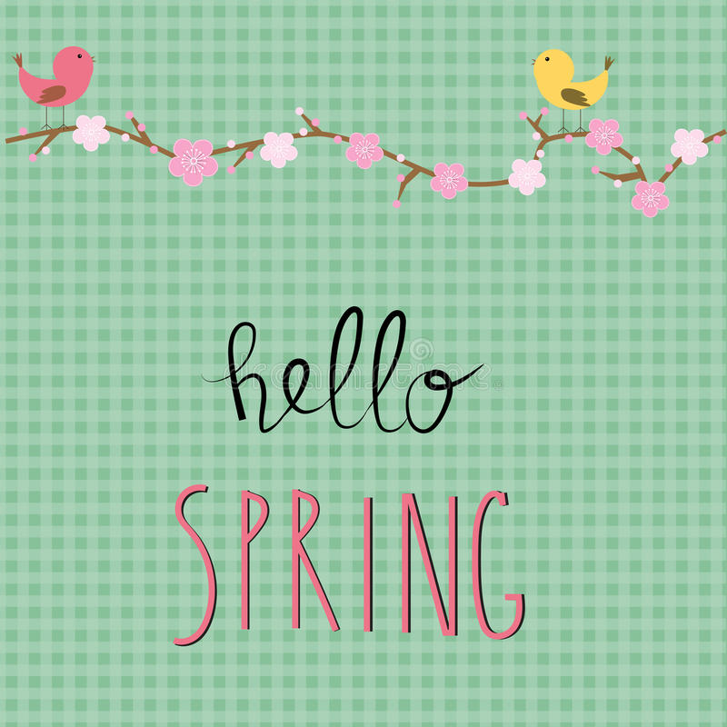 Hallo Frühlings-Hintergrund mit Kirschblütenblumen Abbildung stock abbildung
