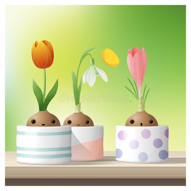 Hallo Frühlingshintergrund mit Frühlingsblume Krokus, Tulpe, Schneeglöckchen auf die Holztischoberseite vektor abbildung