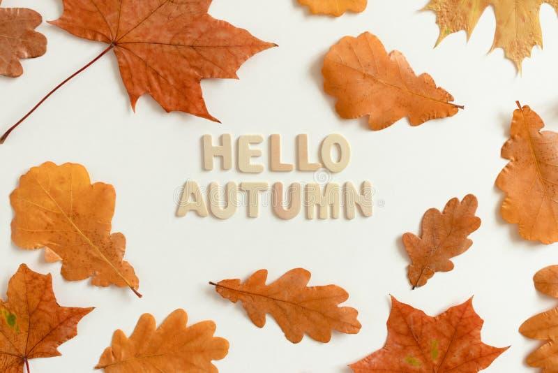 Hallo Herbst lizenzfreie stockfotografie